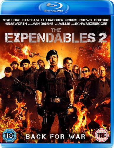 The Expendables 2 2012 Dual Audio BRRip 480p 300MB