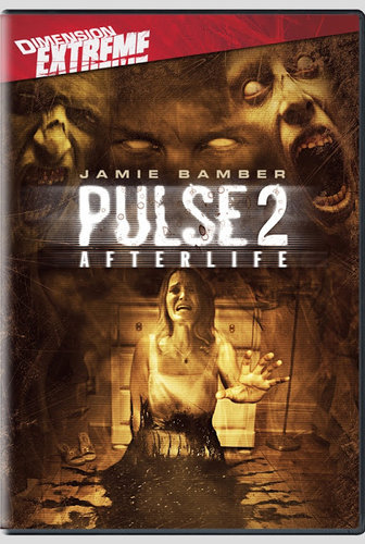 Pulse 2 Afterlife (2008) DVDRip 720p Dual Audio Hindi Dubbed
